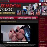 Femdom Craze Gallery