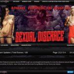 Sexual Disgrace Torrent
